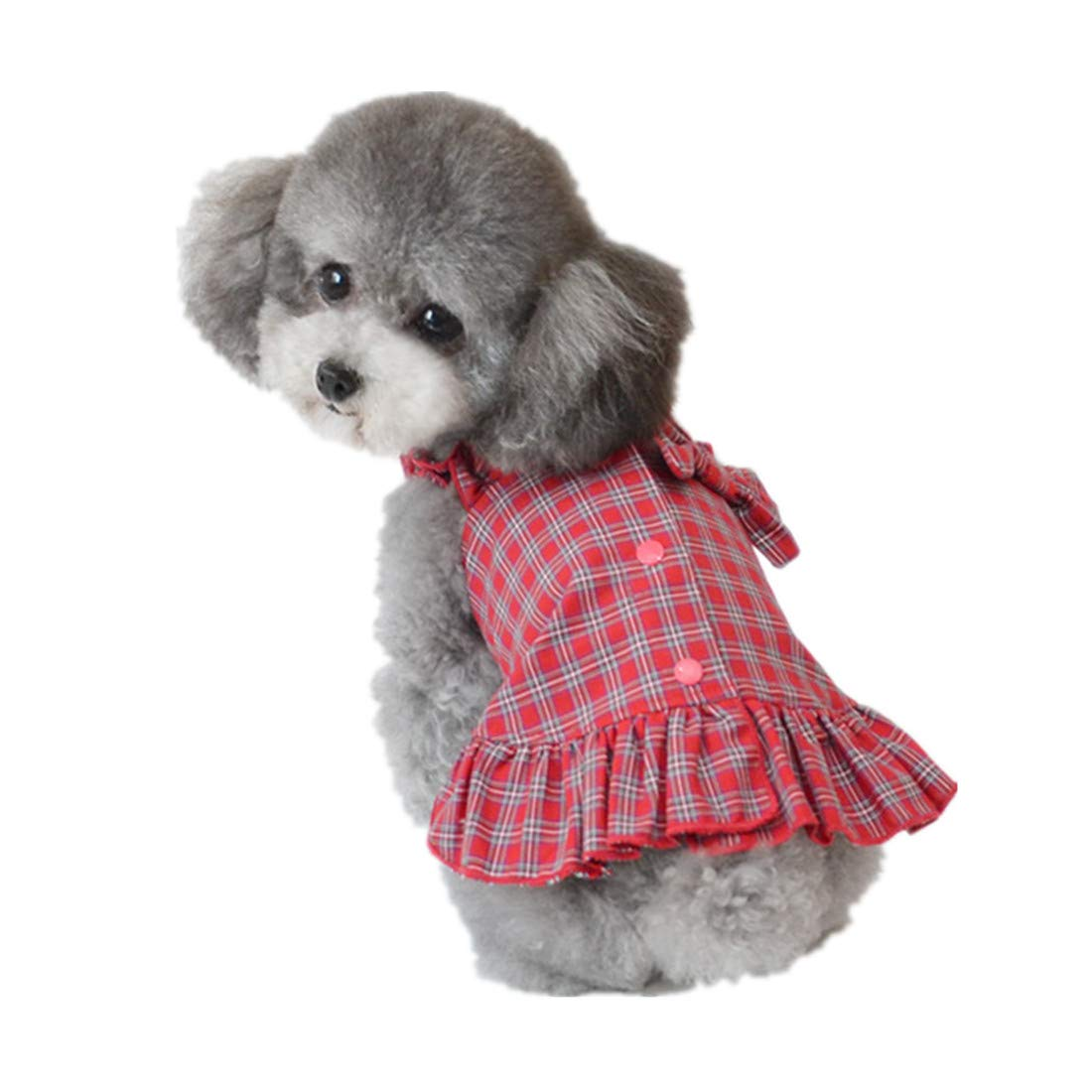 PZSSXDZW Primavera y Verano Ropa para Perros Vestido de Perro ...