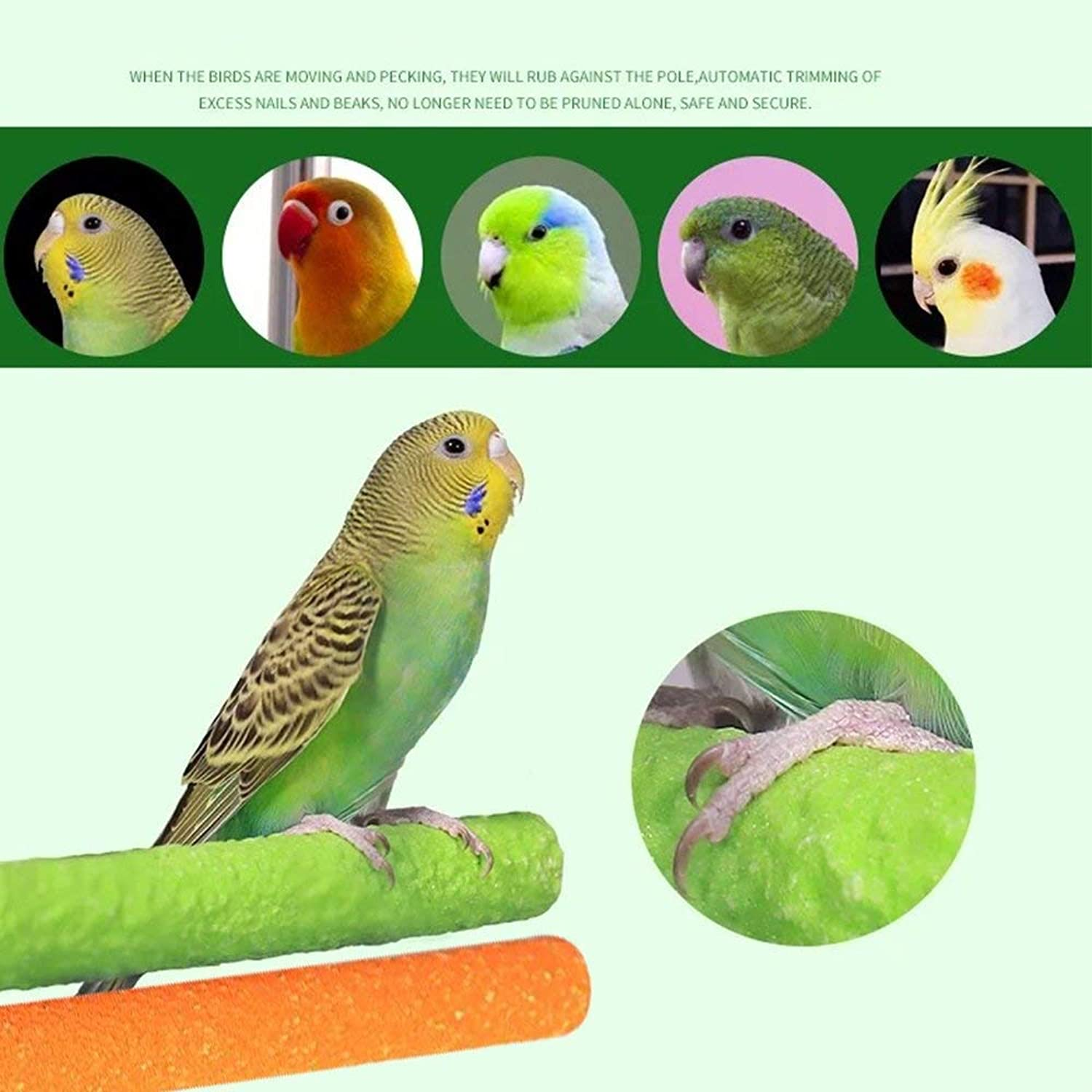 Borange Bird Perch Parred Stand Parakeet Natural Wood Rough Sand Perches Grinding Nail for Small and Medium Cockatoo Cockatiels Conure Bugie Cage Accessories Pack of 2 (20cm 8inch)