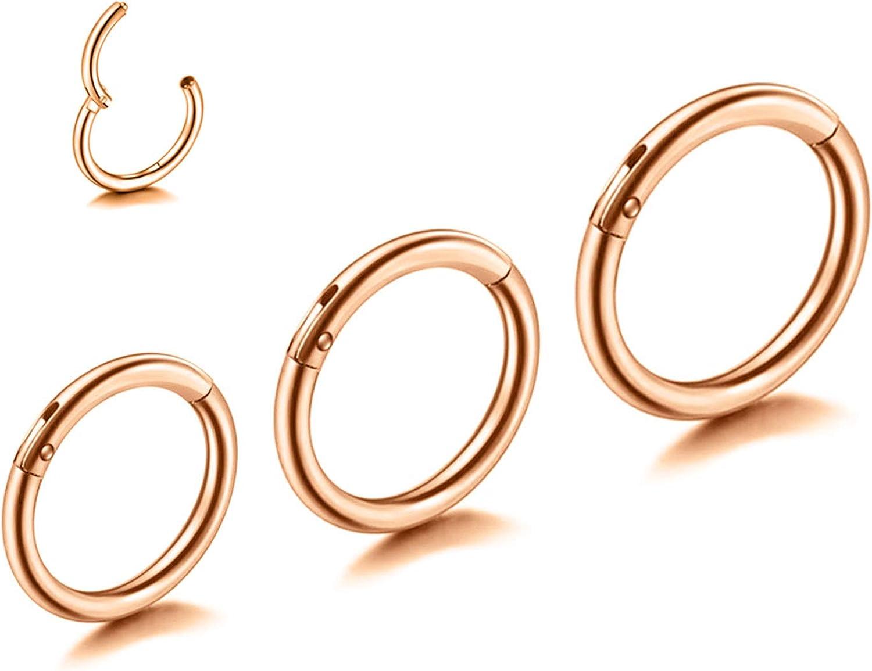 GONAROOK Surgical Steel Nose Rings Hoop Nose Piercing Jewelry, Lip Ring Septum Jewelry CartilageTragus/Helix/Conch/Daith/Rook Hoop Earrings, 20G/18G/16G & 6MM/8MM/10MM Hoops for Women Men.