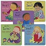Kaplan Early Learning Company My Five Senses Bilingual Board Books - Set of 5