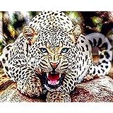 Bimkole 5d Diamond Painting Kit Bricolaje Arte Globo Ocular De Leopardo, Bestia Leopardo Pintura Diamantes Kits Estampados De Punto De Cruz Diamantes de Imitación Decoración de Pared, (40x50 cm)