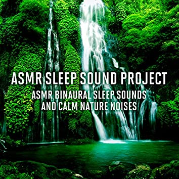 ASMR Binaural Sleep Sounds and Calm Nature Noises