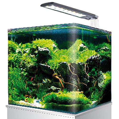 AMTRA NANOTANK SYSTEM 60 / Acquario in vetro completo di luce LED e filtro / cm 38x38x43 / 60 Litri