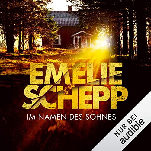 Im Namen des Sohnes audiobook cover art