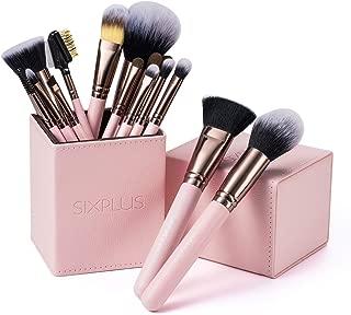 SIXPLUS 15Pcs Pink Makeup Brush Set with Makeup Holder (Pink)