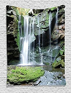 Ambesonne Waterfall Decor Collection, Rocky Waterfall Pond Runoff Scenic Nature Picture, Bedroom Living Kids Girls Boys Room Dorm Accessories Wall Hanging Tapestry, Green Olive White
