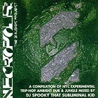 Necropolis: Dialogic Project by DJ Spooky