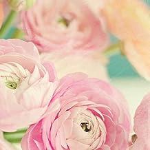 Blushing Blossoms Square I Poster Print by Sarah Gardner (24 x 24)