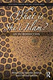 What is Shi'i Islam?: An Introduction (Routledge Persian and Shi'i Studies, Band 3) - Mohammad Ali Amir-Moezzi