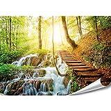 PMP-4life XXL Poster Waldtreppe neben Wasserfall |