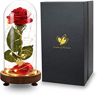 Beauty and the Beast Rose, USB switch with 20 LED Light and Fallen Petals on a Glass Dome Wooden, Base for Weddings, Anniversaries, Wedding Accessories & Christmas Presents