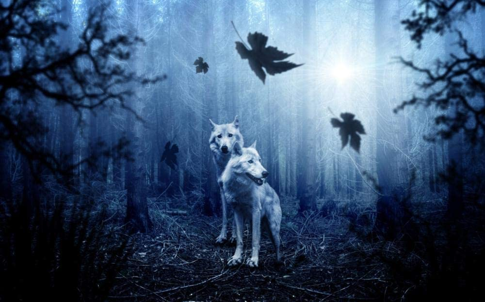 YYSBX Counted Cross Stitch Kit Wolf 16 Max 47% OFF Forest Full inches 20 At the price of surprise ×