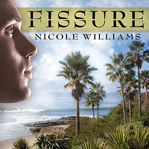 Fissure audiobook cover art