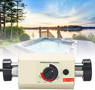 Best mini pool heater Reviews