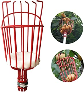 GEZICHTA Fruit Picker Tool or Fruit Tree Picking Pole with Basket,Fruit Picker with Light-weight Aluminum Telescoping Pole, Fruit Picking Equipment for Picking Oranges,Apples or any Kinds of Fruits