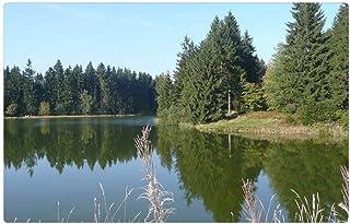 LESGAULEST Doormat Floor Rug/Mat (23.6 x 15.7 inch) - Seascape Resin Lakes Ponds Nature Landscape