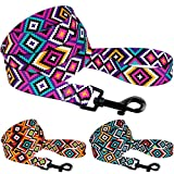 CollarDirect Aztec Dog Leash Nylon Tribal Pattern Cat Pet Leashes for Small Medium Large Dogs Puppy Lead 5 FT...