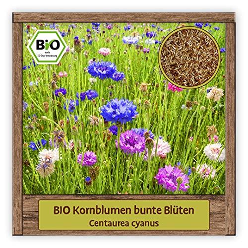 BIO bunte Kornblumen Samen Blumensamen Mischung Wildblumensamen für Bienenweide & Sommerblume mit essbaren Blüten