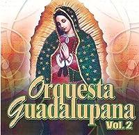 Orquesta Guadalupana 2