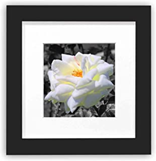 Golden State Art, 6x6 Black Photo Square Wood Frame, for Smartphone Instagram Pictures, Wall Decoration. Includes a White Mat for 4x4 Photo & Real Glass