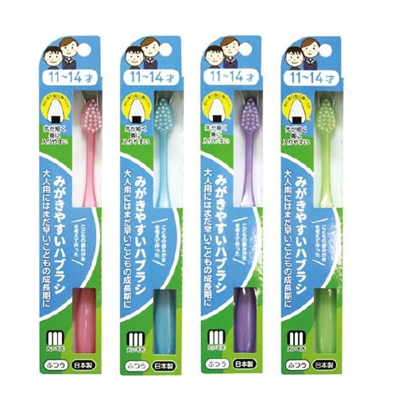 アンプ掃く元気みがきやすいハブラシ 11~14才用 フラット LT-40×12本セット(ピンク×1、ブルー×1、パープル×1、グリーン×1)