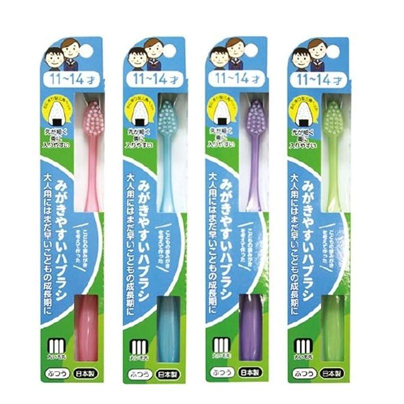 コウモリ説明的渇きみがきやすいハブラシ 11~14才用 フラット LT-40×12本セット(ピンク×1、ブルー×1、パープル×1、グリーン×1)
