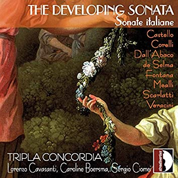 The Developing Sonata