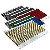 Floordirekt PRO Repräsentative Fußmatte Profi Brush - Testurteil Sehr Gut - Schmutzfangmatte mit Alu Rahmen für außen und innen - Verschiedene Bürsten Farben und Größen (50x80cm Beige)