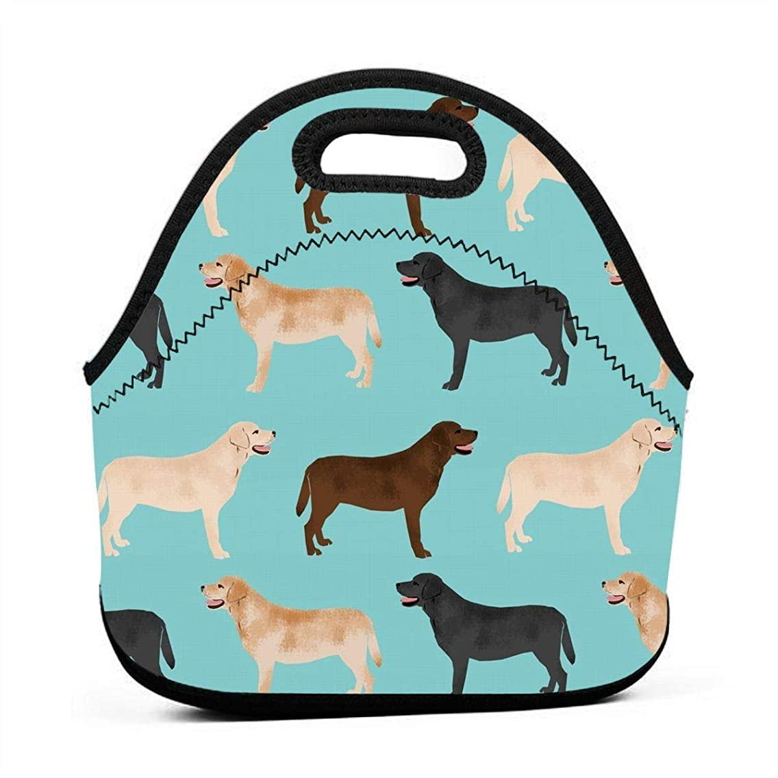 Lunch Bag Cute Labradors Yellow Chocolate Black Lab Pet Dogs Insulated Reusable Lunch Box Portable Lunch Tote Bag Meal Bag Ice Pack for Kids Boys Girls Adult Men Women