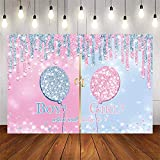 Avezano Blue or Pink Balloon Gender Reveal Background Pin Blue Glitter Dots Boy or Girl Gender Reveal Party Decoration,What Will It Be Baby Reveal Backdrops for Photography (5x3ft)