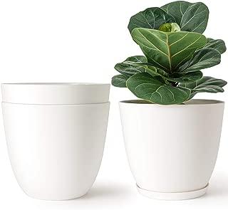 Best plastic decorative plants Reviews