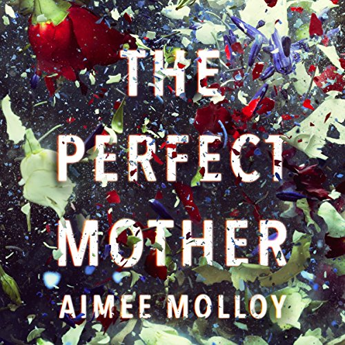 The Perfect Mother cover art