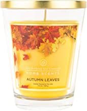 Home Scents 11.5oz Glass Jar Candle, Autumn Leaves