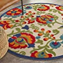 Nourison Aloha Indoor/Outdoor Multicolor 4' Round Area Rug