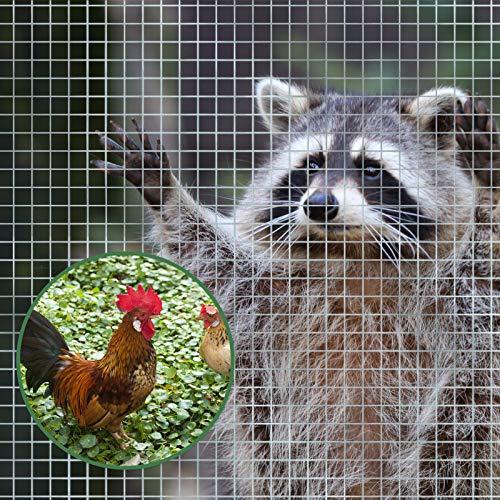 Drahtgitter feinmaschig | Rolle extra lang | Metallgitter als Volierendraht, Kaninchendraht, Wühlmausgitter, für Hochbeet im Garten | 100 cm Höhe x 5 m Länge | Maschenweite 6,3 x 6,3 mm | verzinkt