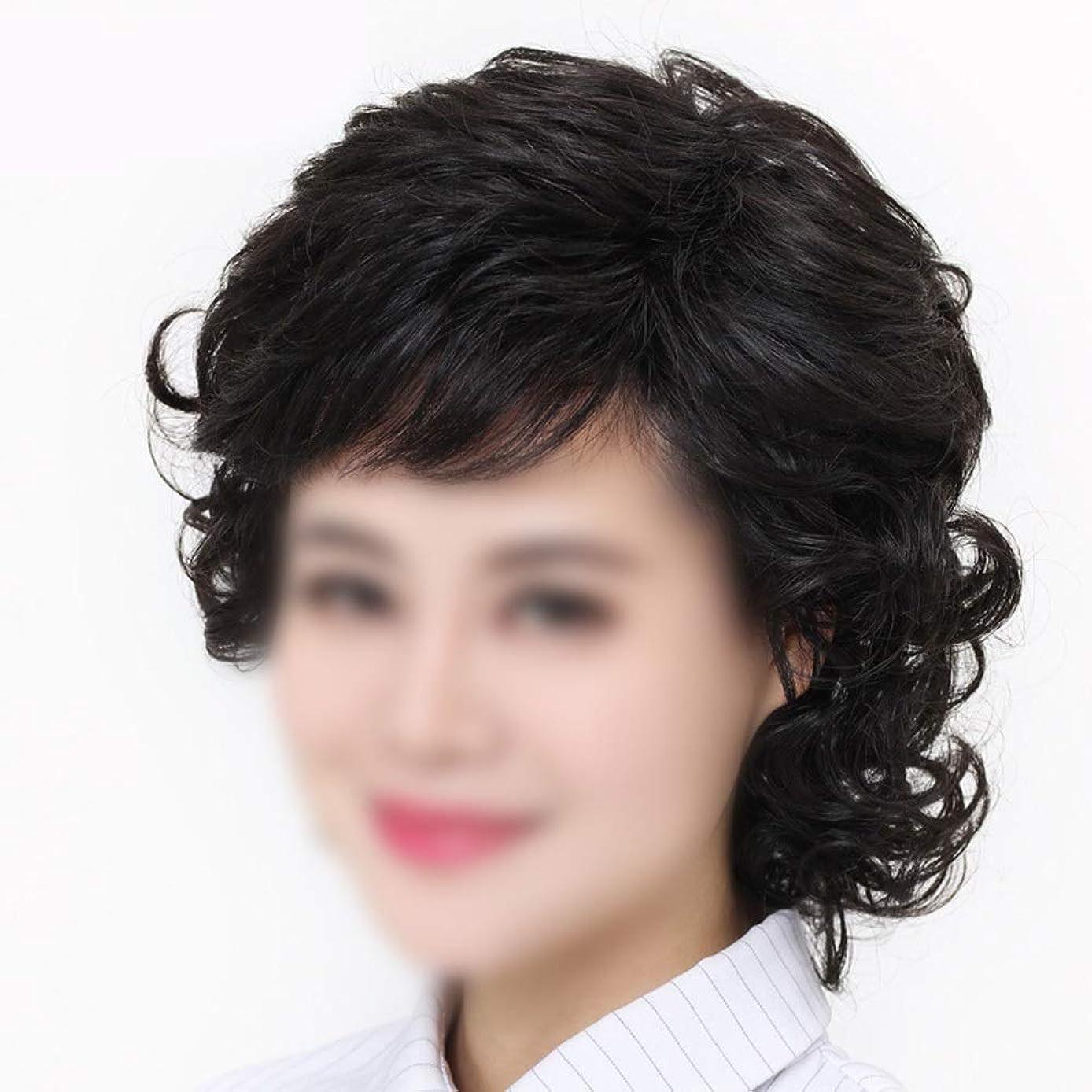 想像力豊かな見落とすシティYOUQIU 女性の中年ウィッグ母の髪のかつらのために手織りショートヘアレアル髪ダークブラウンウィッグ (色 : Natural black, サイズ : Hand-needle)