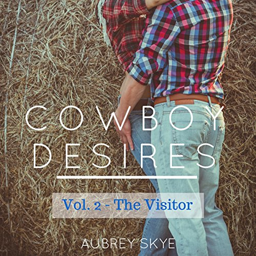 Cowboy Desires: Vol. 2 - The Visitor audiobook cover art