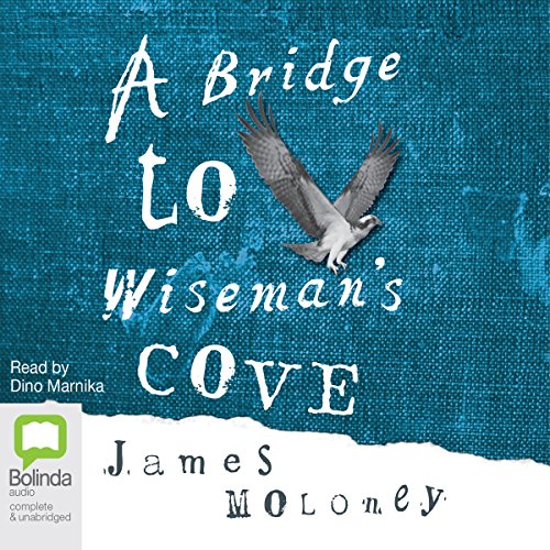 A Bridge to Wiseman's Cove Titelbild