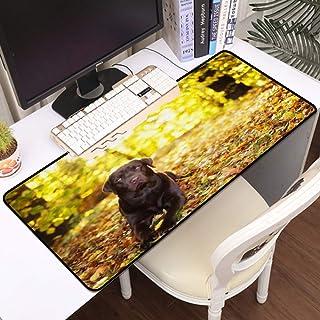 Luoquan Alfombrilla Raton Grande Gaming Mouse Pad,Labrador Retriever Miente Mascota Doméstica Querido Soleado Fuera Animal...