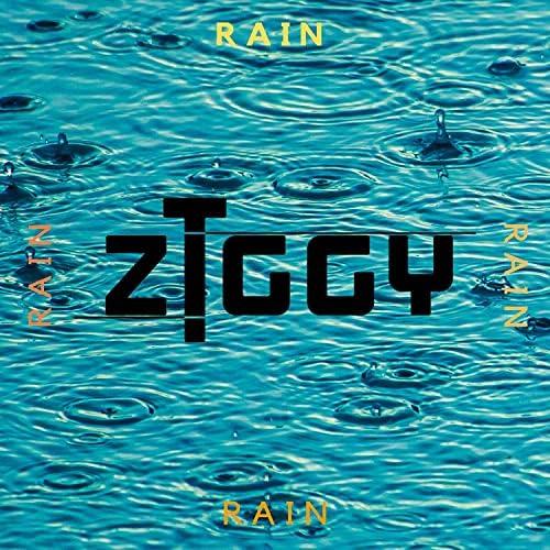 Ziggy T