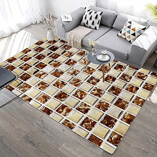 YQZS Suave cómodo de la Alfombra, Pozo Cuadrado Abstracto Dormitorio Mesa de café sofá decoración del hogar Alfombra,160X230(63X90inch)