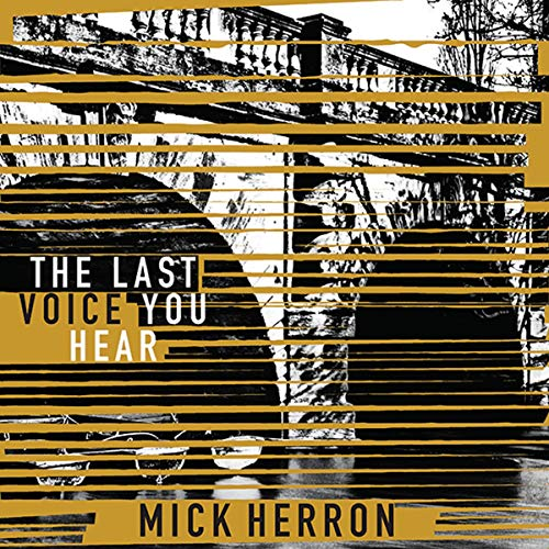 The Last Voice You Hear cover art
