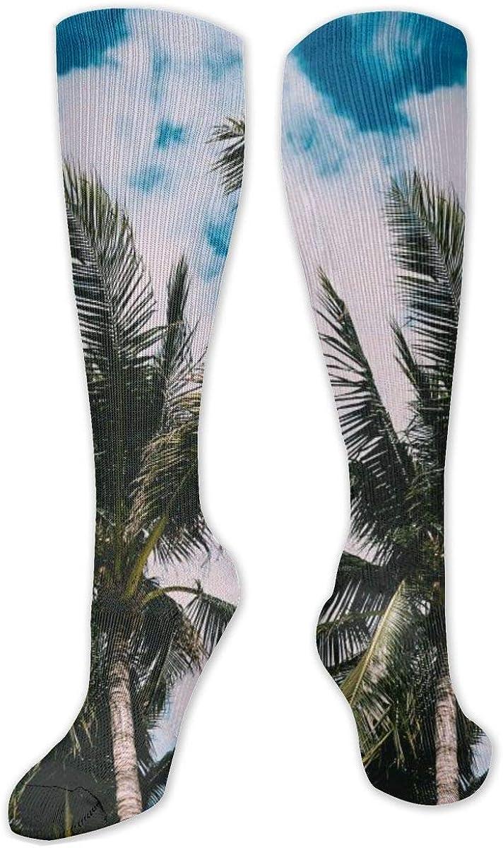 Palms Tree Leaves Sky Knee High Socks Leg Warmer Dresses Long Boot Stockings For Womens Cosplay Daily Wear