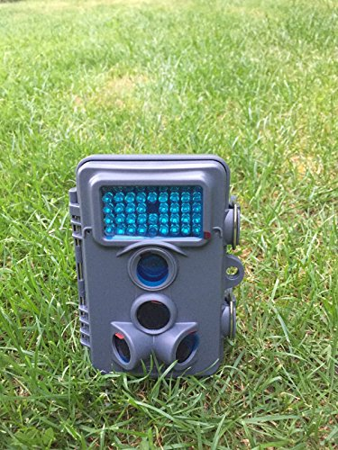 Maginon Wildkamera Überwachungskamera 5 MP WK4HD inklusive Speicherkarte (Grau)