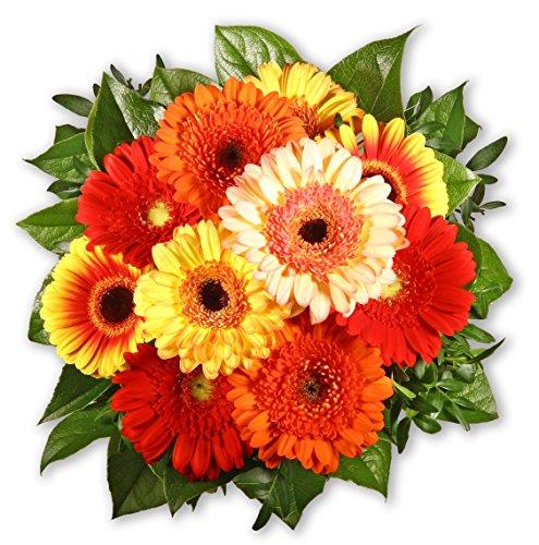 """Blumenstrauß Blumenversand """"Gerberakuss"""" +Gratis Grußkarte+Wunschtermin+Frischhaltemittel+Geschenkverpackung"""