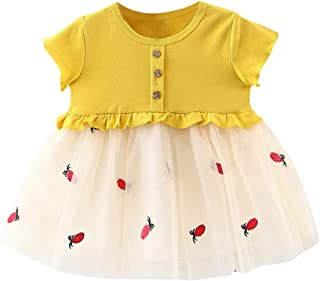 Newborn Kids Baby Girl Dress Embroideried Tulle Patchwork A-Line Tiered Tutu Tulle Flower Girl Skirt