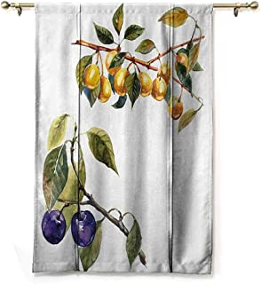 DONEECKL Room Dark Black Insulated Roman Blind Tree Watercolor Style Effect Plum Trees with Branches and Leaves Pattern Thermal Insulated Block Out Sunlight Shade W36 xL64 Reseda Green Earth Yellow