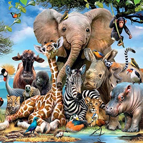 Wild Animals Birthday Card 3D Lenticular/Holographic