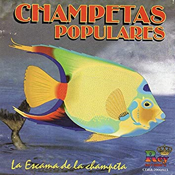 Champetas Populares la Escama de la Champeta
