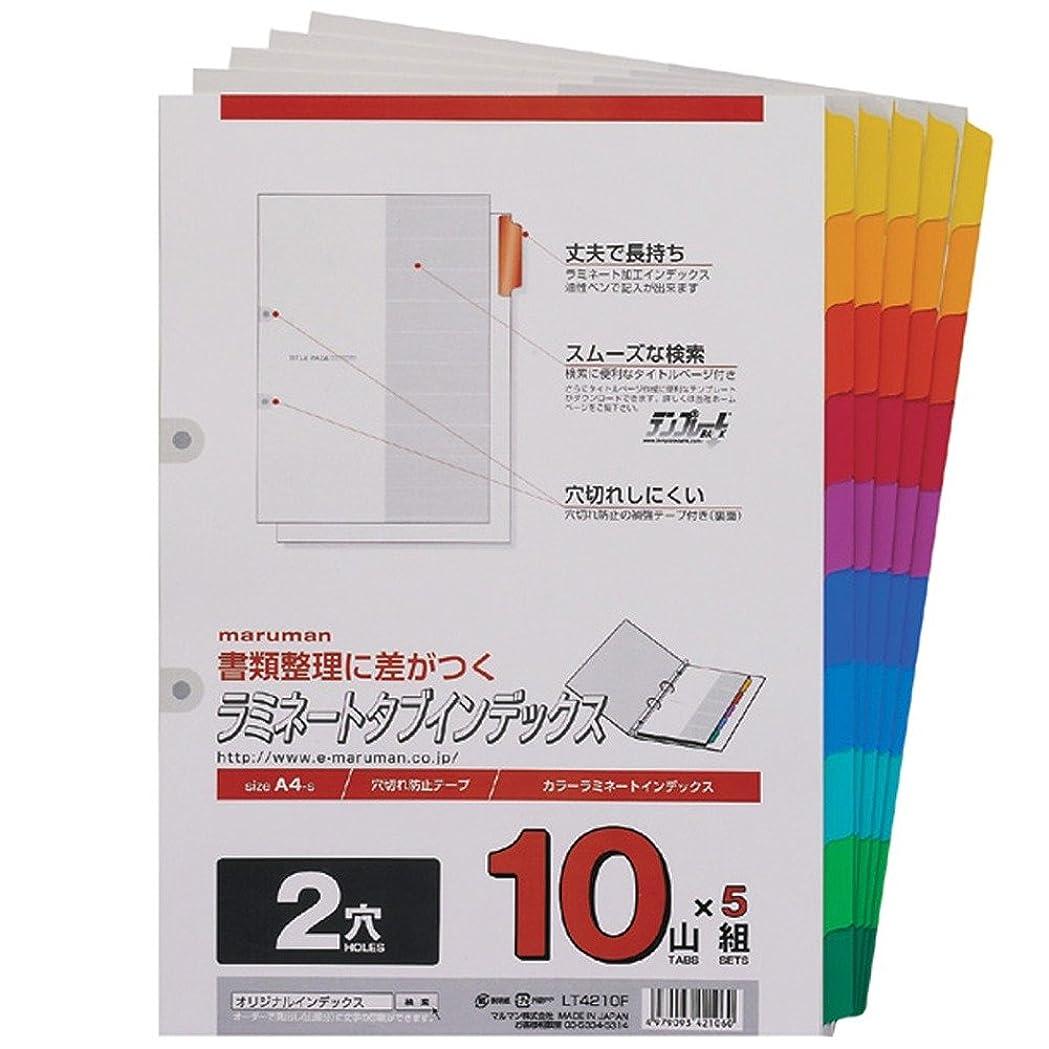 国旗リスク識別するマルマン ラミネートタブ インデックス  LT4210F A4 2穴 10山 5組